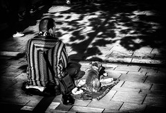 Toujours ensemble... / Always together... (vedebe) Tags: ville city rue street urbain urban homme chiens animaux ombres noiretblanc netb nb bw monochrome