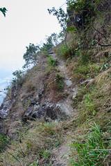 DSC_3855 (sch0705) Tags: hk hiking stream kowloonpeak kowloonpeakhinterland kowloonpeakhinterlandstream