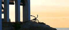 ANCLA (Joan Biarnés) Tags: calelladepalafrugell costabrava baixempordà girona catalunya 285 panasonicfz1000