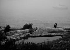 IMG_0838 (www.ilkkajukarainen.fi) Tags: blackandwhite monochrome mustavalkoinen soderskär sea meri fog sumu porvoo saari island sailing boat purjevene suomi finland finlande eu europa scandinavia
