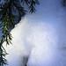 snow closeup 2