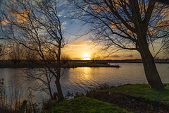 The sun is shining on the water (jan.vd.wolf) Tags: sunset zonsondergang water river rivier sun zon tree boom cloud wolken yellow sky