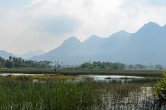 Sam Roi Yot (sillie_R) Tags: mountains nationalpark samroiyot swamp thailand prachuapkhirikhan th
