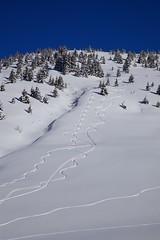 Virages (Hyprated) Tags: mont montagne blanc neige virages arbres canon 5d markii 24105 l f16 ciel bleu