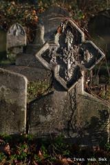 Brompton Cemetery (Ivan van Nek) Tags: bromptoncemetery london londres londen westbrompton chelsea d3200 nikond3200 nikon england engeland angleterre unitedkingdom greatbritain cemetery derailinator cimetière brexit grafsteen gravestone monument mysteriousplacewithnoname