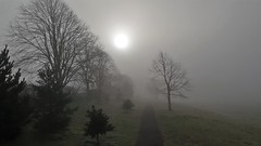 A Very Fogy Morning. (ManOfYorkshire) Tags: doncaster boltonhillfield boltonhillfields bessacarr fog foggy mist morning sun piercing through weather atmosphere