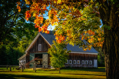 New Hampshire autumn afternoon (FotoFloridian) Tags: autumn tree ruralscene outdoors nature buildingexterior architecture usa builtstructure red newenglandusa architectureandbuildings old woodmaterial alpha a6000 nik newhampshire farm sony