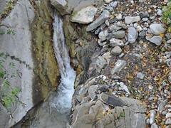 DSCN8086 (keepps) Tags: switzerland suisse schweiz vaud brent fall autumn landscape bayedeclarins