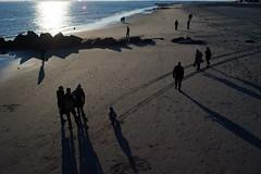 Beach-goers (dtanist) Tags: nyc newyork newyorkcity new york city sony a7 konica hexanon 40mm brooklyn coney island steeplechase pier beach sea shore beachgoers shadows