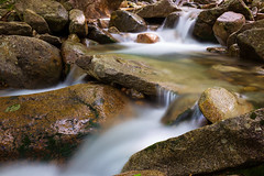 Falling Waters Trail Stream (even tighter view) (phonnick) Tags: fallingwaters fallingwaterstrail whitemountain nationalforest franconiaridge franconianotch statepark newhampshire newengland stream trail hiking water mountain trees rocks waterfall forest landscape summer park canon 6d longexposure