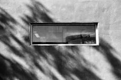 Comme un voile derrière la fenêtre... (woltarise) Tags: garage fenêtre rangement boîtes ombreslumière mamiyasuperdeluxe argentique film nb rollei rpx400 montréal outremont quartier