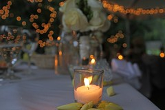 """The Main Table • <a style=""""font-size:0.8em;"""" href=""""http://www.flickr.com/photos/109120354@N07/31165426877/"""" target=""""_blank"""">View on Flickr</a>"""