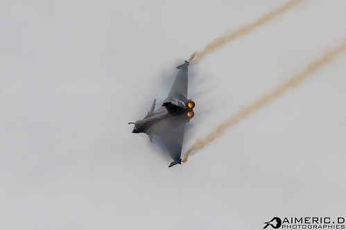 Dassault Aviation Rafale C - Rafale Solo Display