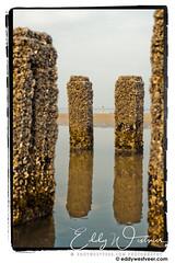 A perfect day! (Eddy Westveer PHOTOGRAPHY) Tags: oostkapelle strand zeeuwsdna zeeuwsjaarvanhetwater nederland nl