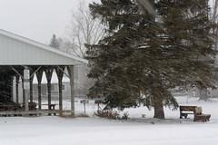 Winter (joeldinda) Tags: village sky cloud treefrog michigan mulliken greysky park 4384 january graysky grey gray snow 1v2 nikon1v2 nikon winter weather v2 2019 19365