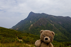 Photo (Adventures With Teddy) Tags: teddy adventures with adventureswithteddy withteddy bear nature hong kong sai kung ham tin sharp peak hike saunter beach mountain bay water blue green travel blog international bug travelblog country countrypark woods photo photography original photographers