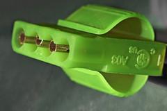 Green #MacroMondays (roanfourie) Tags: macromondays green theme light day spring nikon d3400 nikkor afp 1855mm f3556 g vr dx raw gimp november 2018 kitlens