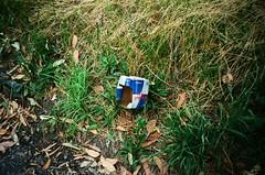 Trash - Red Bull Carton (Matthew Paul Argall) Tags: kodakstar435 fixedfocus focusfree 35mmfilm kodakultramax400 kodak400 ultramax 400isofilm pollution trash rubbish litter