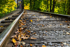 Winter's on the schedule (FotoFloridian) Tags: railroad tracks train leaf rails green orange autumn newhampshire newengland sony alpha a6000