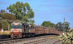 SCT011 LDP002 and SCT004 pull into Horsham for a crew change on PM9 (bukk05) Tags: sct011 railpage:class=97 railpage:loco=sct011 rpausctclass rpausctclasssct011 ldp002 sct004 sctclass ldpclass wimmera westernstandardgaugeline wagons explore export engine emd electromotivediesel emd16710g3ces rail railway railroad railwaystation railwaystations railpage rp3 ruralcityofhorsham train tracks tamron tamron16300 photo photography pm9 loco locomotive horsepower hp gt46cace flickr freight diesel station sg summer standardgauge australia artc canon canon60d victoria victorianrailways victorianrailway vr vline 2019 vans mainline crew crewchange locomotivedemandpower downeredi edi specialisedcontainertransport sctlogistics sct