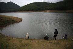 Munnar.India (VincenzoMonacoo) Tags: canon 6d tamron 2470 india kerala munnar karnataka ooty mountain travel adventure leica nikon