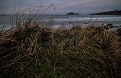 Through the grasses (NikNak Allen) Tags: bantham big bury burghisland island grass grasses dunes beach sand sea water ocean coast cliffs waves wave surf sets smooth low pov early morning view look longexposure wind movement nd 10stop texture patterns seascape landscape