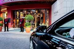 The Pearl Marrakech recrute 3 Profils (dreamjobma) Tags: 012019 a la une hôtellerie et restauration the pearl marrakech emploi recrutement hotellerie recrute