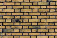 Yellow bricks (Ivan van Nek) Tags: yellowbricks kleinesintjansstraat amersfoort utrecht thenetherlands nikon nikond7200 d7200 wall muur mur provincieutrecht gelestenen gelebakstenen yellow brick bricks bakstenen minimalist