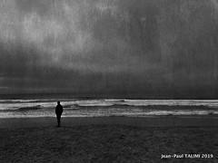 Océanique (JEAN PAUL TALIMI) Tags: calme biscarrosse bw jeanpaultalimi talimi texture landes lumieres solitude dune aquitaine noiretblanc nature mer coteslandaises monochrome ocean