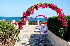 Wedding Reception (BaobabBeachResort) Tags: beachlife resort bride groom weddings kenya hotel ocean mombasa ukunda