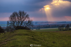 Stane Street Sunburst (Christian Lawrence Photography) Tags: autumn bignor hill sussex south downs landscape sunburst roman road tree