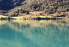 (mari-ann curtis) Tags: norway summer 2017 travel landscape colour film 35mm hjelle fjord turquoise water reflections trees light shadow nostalgia memories