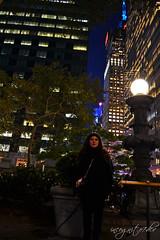 Bryant Park Most Beautiful Lamps Manhattan New York City NY P00017 DSC_3015 (incognito7nyc) Tags: newyork newyorkcity nyc ny nyny manhattan midtown midtownmanhattan bryantpark wintervillage 6thave park night city citylights skyscrapers towers cityofdreams nyccityofdreams cityofdreamsnyc empirestate empirestateofmind nycstateofmind incognito7dcv incognito7nyc newyorkstateofmind newyorkgirl newyorklife newyorkdream newyorkdreams lamp lamppost fairytales nikon dslr d3100 nikond3100 loveny ilovenewyork lovenyc
