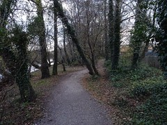 Something's missing (Phil Gayton) Tags: path track trail tree water sky autumn fall riverside walk river dart totnes devon uk