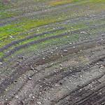 Stripes - Streifen thumbnail