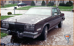 Hail Storm Destroyed My 1985 Cadillac Eldorado Roof in 1999 ... (Davey Z (3)) Tags: hail storm destroyed 1985 eldorado roof 1999 indiana pre tornado poked holes vinyl cadillac car brown dented wire wheel covers stones pummeled ice frozen davey z 1 2 3