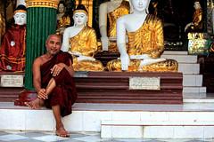 A Monk At The Shwedagon, Myanmar (El-Branden Brazil) Tags: myanmar burma burmese monks buddhism buddhist southeastasia asian asia yangon shwedagon