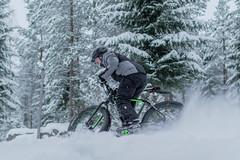 Winter cycling in Tahko 4 (VisitLakeland) Tags: finland lakeland mtb tahko tahkosafarit bike cycling ebike fatbike lumi luonto maastopyörä maisema nature outdoor pyörä pyöräily snow talvi talvipyöräily winter