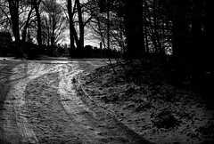 Spiegelglatt (Helmut Reichelt) Tags: glatt eisig spuren gegenlicht weg strase schnee schwaigwall geretsried bayern bavaria deutschland germany winter januar leica leicam typ240 captureone12 silverefexpro2 leicasummilux50mmf14asph