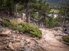 The Road Ahead (gljorgen) Tags: water lake rocks trees colorado rmnp lilylake hiking trail