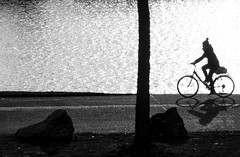 On The Way (CoolMcFlash) Tags: bike bicycle person street streetphotography candid bw blackandwhite blackwhite bnw vienna silhouette ride rad fahrrad strase sw schwarzweis kontur wien fahren fotografie photography fujifilm xt2 xf18135mmf3556r lm ois wr schatten shadow