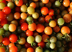 Late Harvest (Treflyn) Tags: late harvest fruit vegetable colour red orange green last tomato tomatoes greenhouse today earley reading berkshire uk