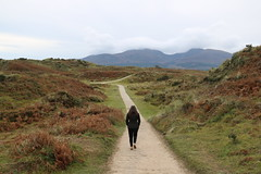 Into the wild (akerrzz) Tags: dunes sand murlough ireland codown northernireland girl coat walk sunday boardwalk mountains mourne donard cloud