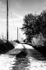 country road (noe.giovanni) Tags: sun sunny sunset fog road weather country countryside bw outside outdoor