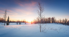 Winter (czdistagon.com) Tags: winter snow landscape frozen fir beautiful frost new year dawn white season forest hoarfrost sun cold nature outdoor hoar spruce wood background snowy snowfall holiday vacation hill wonderland travel ice cloud panorama scene cover nobody panoramic view powder shadow scenic trip weather silence natural breathtaking tourism russia