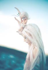 Фантастические Твари (toriasoll) Tags: bjd abjd doll dolls soom soomkorea soomisha isha soompuka puka