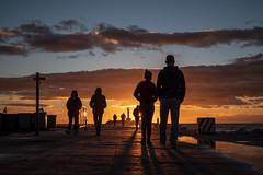 Sunset Meeting (NathalieSt) Tags: autresmotsclés camargue coucherdesoleil europe france gard languedocroussillon legrauduroi nikon nikonz6 nikonpassion nikonphotography rue street streetphoto streetphotography sunset z6