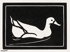 Swimming duck (1923 - 1924) by Julie de Graag (1877-1924). Original from The Rijksmuseum. Digitally enhanced by rawpixel. (Free Public Domain Illustrations by rawpixel) Tags: madepsd madevector animal antique art artwork drawing duck handdrawn illustrated illustration illustrator juliedegraag old pdrijks publicdomain rijksmuseum sketch swimming swimmingduck vintage woodcut