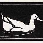 Swimming duck (1923 - 1924) by Julie de Graag (1877-1924). Original from The Rijksmuseum. Digitally enhanced by rawpixel. thumbnail