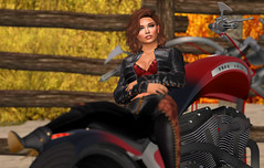 Free Spirit (Tina Destiny) Tags: second life avatar female beauty sexy hot girl brunette catwa secondlife virtual belleza mesh firestorm viewer motorcycle bike leather riding
